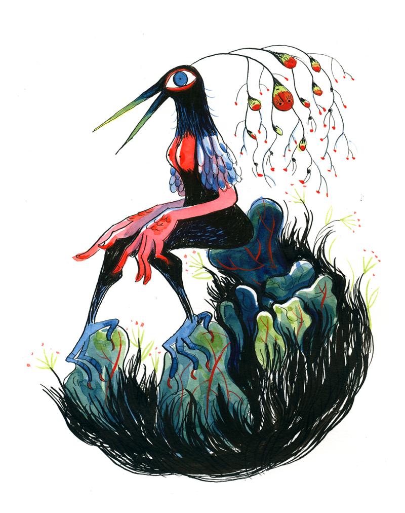 01-oiseau